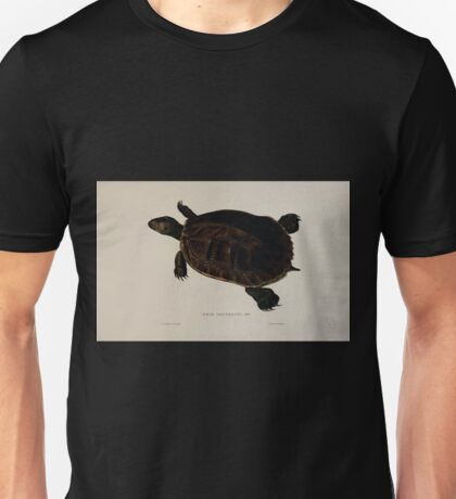 Tortoises terrapins and turtles drawn from life by James de Carle Sowerby and Edward Lear 040 Unisex T-Shirt