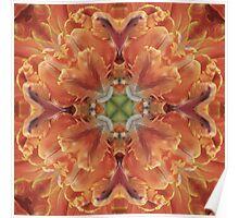 Kaleidoscopic Floral 2.1 Poster