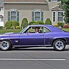 Purple Mustang by Jane Neill-Hancock