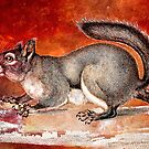 SQUIRREL by Tammera