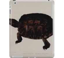 Tortoises terrapins and turtles drawn from life by James de Carle Sowerby and Edward Lear 024 iPad Case/Skin