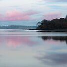 River Foyle, winter by Agnes McGuinness