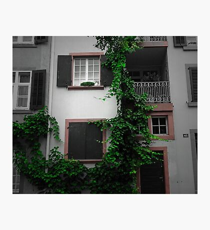 Living with nature Photographic Print
