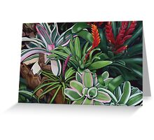 The Bromeliad Trap Greeting Card