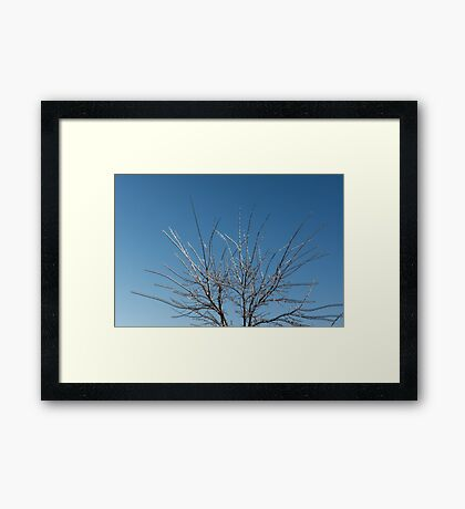 Christmas Decorations by Mother Nature - Brilliant Blue and White Glow in the Sky Framed Print