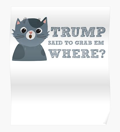 Trump said to grab em where Funny Donald Quote Saying Poster