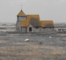 Fairfield Church, Romney Marsh by wiggyofipswich