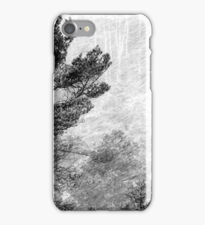 9.11.2016: Pine Trees in Snowstorm iPhone Case/Skin