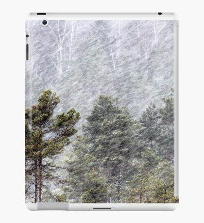 9.11.2016: Pine Trees in Snowstorm II iPad Case/Skin