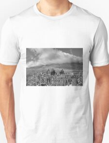 Castle among the Clouds in grey (1) T-Shirt