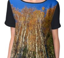 Colorful autumn forest view, Alsace, France Chiffon Top