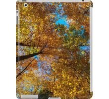 Colorful autumn forest view, Alsace, France iPad Case/Skin
