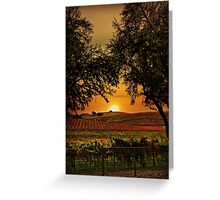 Sunrise Fall Vineyard Greeting Card