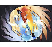 Ninetales & Vulpix Photographic Print