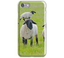 Suffolk Sheep iPhone Case/Skin