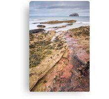 Seacliff Rocks Canvas Print