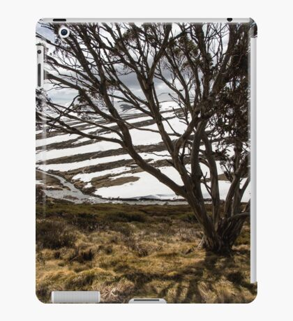 Charlotte Pass iPad Case/Skin