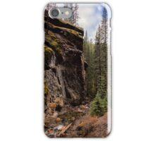 Sundance iPhone Case/Skin