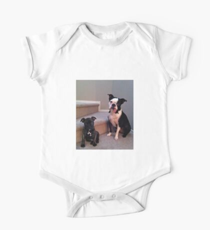 Paddy The Boston Terrier One Piece - Short Sleeve
