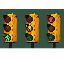 Cryptid Crossing Photographic Print