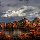 Light Paints the Dells, Prescott Arizona by Wayne King