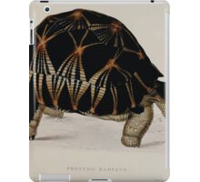 Tortoises terrapins and turtles drawn from life by James de Carle Sowerby and Edward Lear 003 iPad Case/Skin