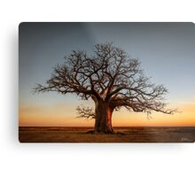 Farewell to the Day Metal Print