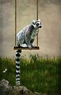 Ringtailed lemur 2 by Lissywitch
