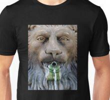 Lion Fountain Unisex T-Shirt