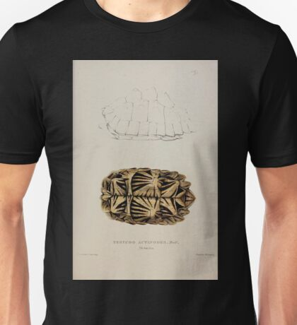 Tortoises terrapins and turtles drawn from life by James de Carle Sowerby and Edward Lear 009 Unisex T-Shirt