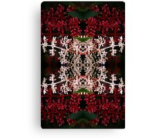 Red and White Plant Kaleidoscope Canvas Print
