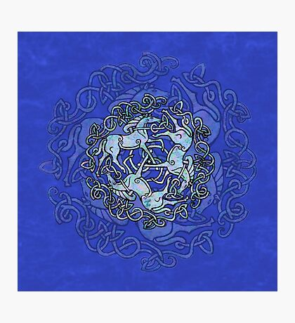 Tri Capall Triskelle - Blue Photographic Print