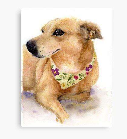 Nixie the Carolina Dog in Watercolor Canvas Print