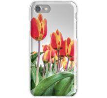 Dutch Tulips part 2 iPhone Case/Skin