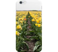 Dutch Tulips part 6 iPhone Case/Skin