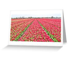 Dutch Tulips part 7 Greeting Card