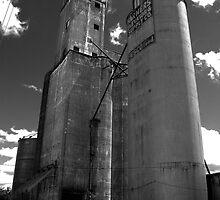 Farmers Elevator Morrison, IL by Adam Kuehl