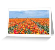 Dutch Tulips part 8 Greeting Card