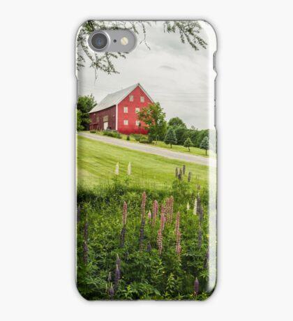 Atlantic Lupins iPhone Case/Skin