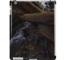 Strickland Falls iPad Case/Skin