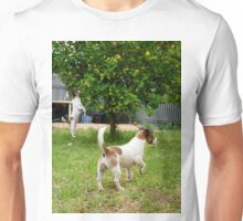 Fox Terriers, Just Call Me Superman. Unisex T-Shirt