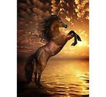 Freedom - Rearing Horse Artwork Photographic Print