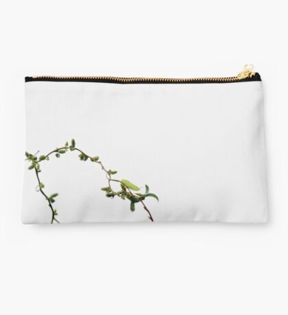 Spring Willow Studio Pouch