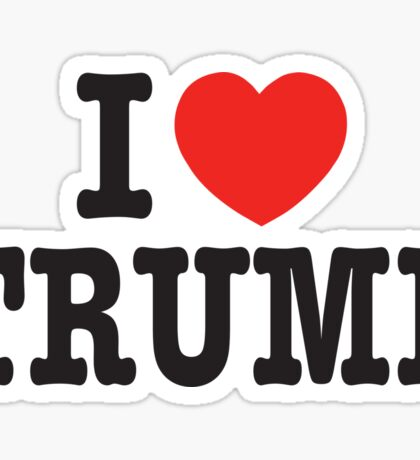 I Love TRUMP - Donald Trump 45th US President 2016 Sticker