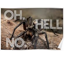 Fear of Spiders Funny Photography Poster