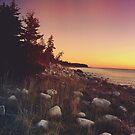 Seaside Sunset by Olivia Joy StClaire