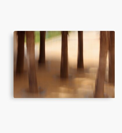 tree school Canvas Print