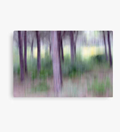 forest gumps Canvas Print