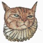 Banjo Cat Face by felissimha