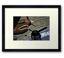 The Tiger and the Corsair Framed Print
